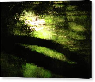 Dreaming Monet Canvas Print by Mark Holbrook