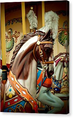 Dreaming Of A Carousel Canvas Print by Dora Hathazi Mendes