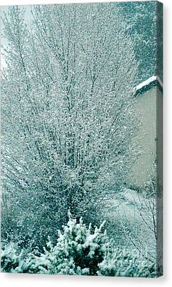 Canvas Print featuring the photograph Dreaming Of A White Christmas - Winter In Switzerland by Susanne Van Hulst