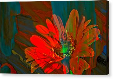 Canvas Print featuring the photograph Dreaming Of Flowers by Jeff Swan