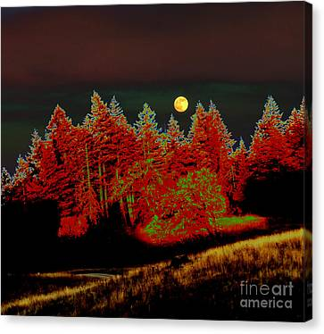 Dreaming Tree Moon Canvas Print by JoAnn SkyWatcher