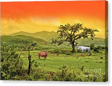 Canvas Print featuring the photograph Dreamland by Charuhas Images