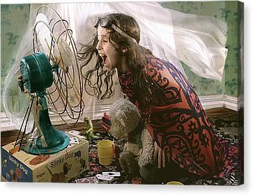Dreams In Flight 2 Canvas Print by Marisa Draeger