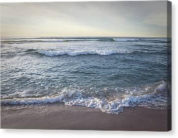 Canvas Print - Dreamtime Sea by Sheri Van Wert