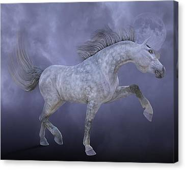Dreamweaver Canvas Print by Betsy Knapp