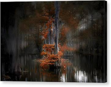 Dreamy Autumn Canvas Print by Cecil Fuselier