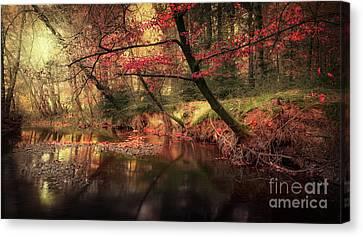 Dreamy Autumn Forest Canvas Print