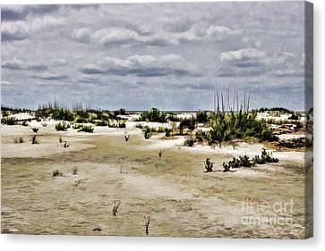 Dreamy Dunes Canvas Print by Roberta Byram