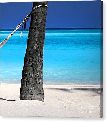 Sea Scape Canvas Print - Dreamy Hammock  -  Part 3 Of 3  by Sean Davey