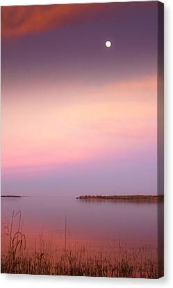 Evening Canvas Print - Dreamy Moon Night by Ellie Teramoto