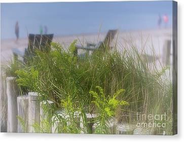 Adirondack Chairs On The Beach Canvas Print - Dreamy Morning Walk On The Beach by Mary Lou Chmura