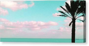 Dreamy Ocean View Canvas Print by Inge Lewis