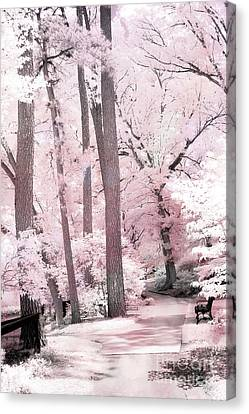 Dreamy Pink And White Infrared Park Woodlands- Infrared Pink Trees Park Bench Landscape Canvas Print by Kathy Fornal