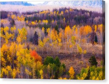 Dreamy Rocky Mountain Autumn View Canvas Print by James BO  Insogna