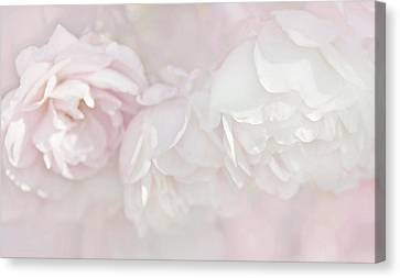 Dreamy Rose Flowers In Pink White Pastels Canvas Print