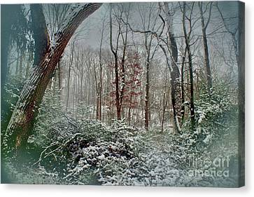 Canvas Print featuring the photograph Dreamy Snow by Sandy Moulder