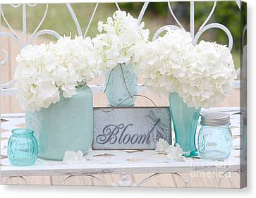 Dreamy White Hydrangeas - Shabby Chic White Hydrangeas In Aqua Blue Teal Mason Ball Jars Canvas Print by Kathy Fornal