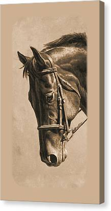 Dressage Horse Sepia Phone Case Canvas Print by Crista Forest