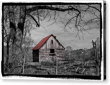 Dressed In Red Canvas Print by Debra and Dave Vanderlaan