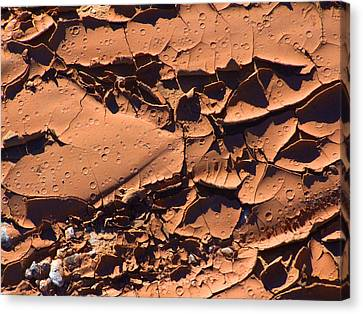 Dried Mud 5c Canvas Print