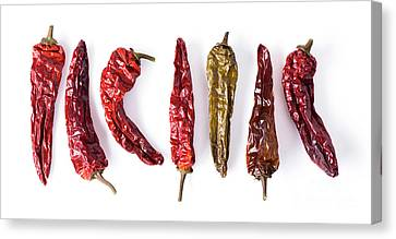 Dried Peppers Lined Up Canvas Print