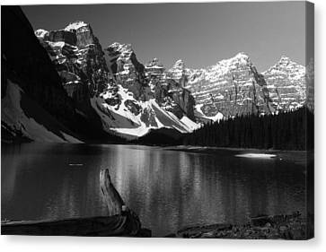 Drift Wod On Lake Moraine Canvas Print