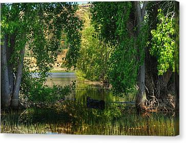 Drifting In Paradise Canvas Print by Thomas  Todd