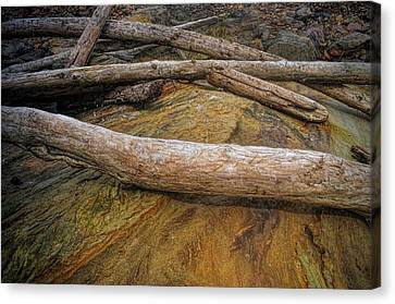 Driftwood And Rock Canvas Print