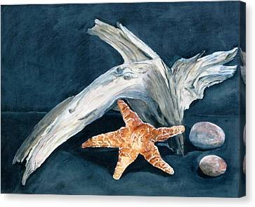 Driftwood And Starfish Canvas Print