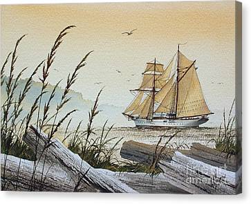Driftwood Bay Canvas Print by James Williamson