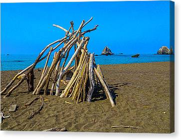 Sonoma Coast Canvas Print - Driftwood Beach Art by Garry Gay