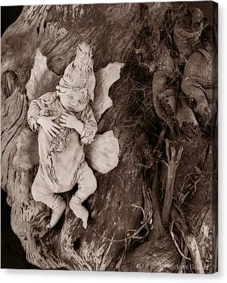 Driftwood Fairy Canvas Print by Anne Geddes