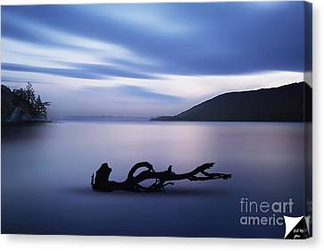 Canvas Print featuring the photograph Driftwood by Jim  Hatch