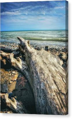 Driftwood On Beach - Grant Park - Lake Michigan Shoreline Canvas Print by Jennifer Rondinelli Reilly - Fine Art Photography