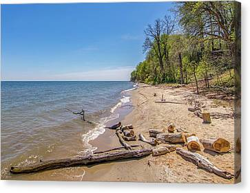 Canvas Print featuring the photograph Driftwood On The Beach by Charles Kraus