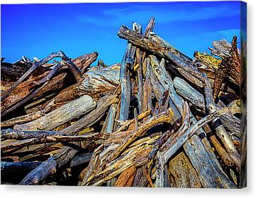 Driftwood Pile Up Canvas Print by Garry Gay