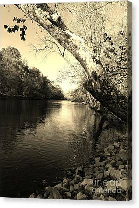 Driftwood River Southern Indiana -sepia Canvas Print