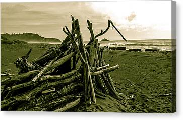 Driftwood Shelter Canvas Print