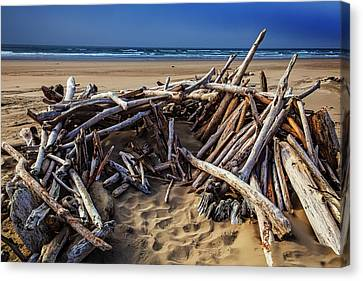 Driftwood Shelter Oregon Coast Canvas Print by Garry Gay