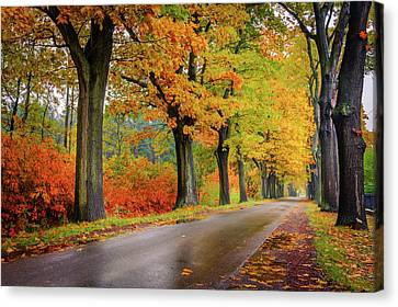 Canvas Print featuring the photograph Driving On The Autumn Roads by Dmytro Korol