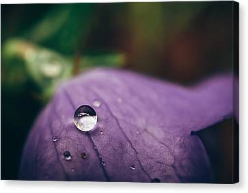 Droplet Canvas Print - Droplet by Tracy  Jade