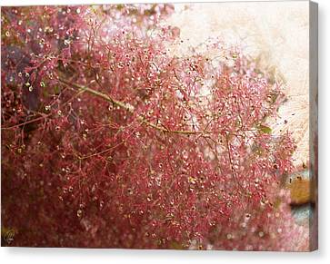 Canvas Print featuring the digital art Droplets by Margaret Hormann Bfa