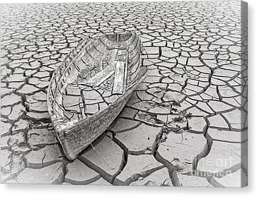Drought Canvas Print by Edward Fielding