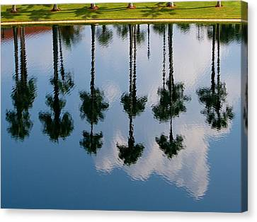 Canvas Print featuring the photograph Drowning Palms by Ron Dubin