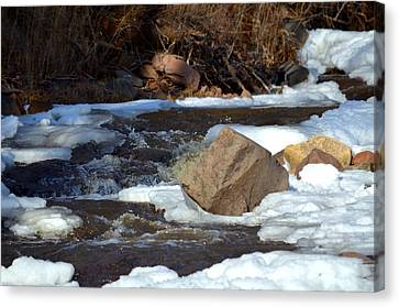 Drufee Creek In Snow Cover Canvas Print