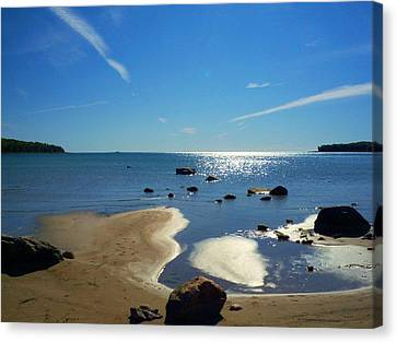 Drummond Shore 1 Canvas Print by Desiree Paquette