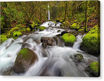 Dry Creek Falls In Spring Canvas Print by David Gn