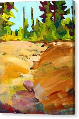 Dry Creek Canvas Print by Nancy Merkle