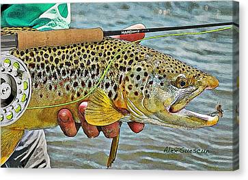 Dry Fly Brown Canvas Print by Alex Suescun