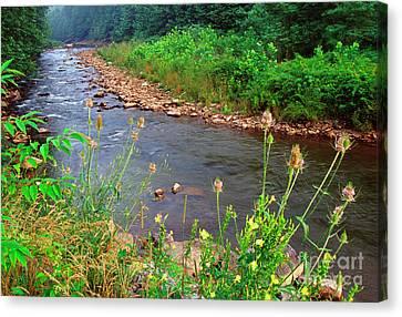 Dry Fork River Canvas Print by Thomas R Fletcher